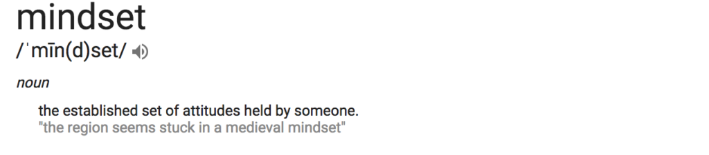 Definition of mindset